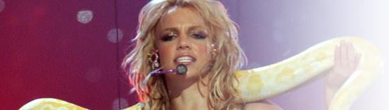 vmas2001